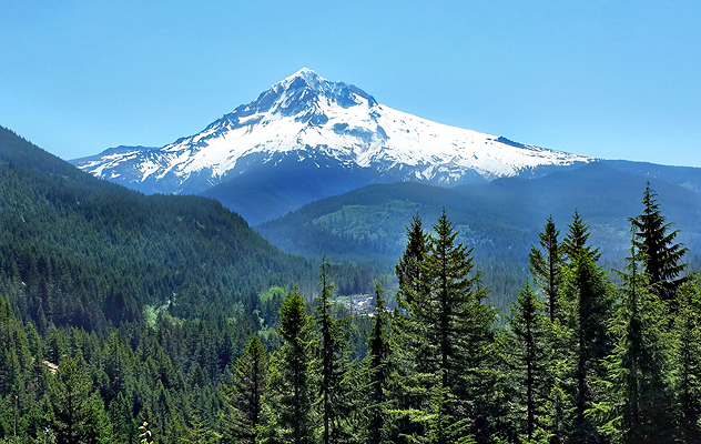 View of Mt. Hood from Lolo Pass Road