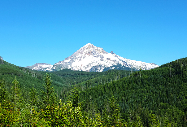 Lolo Pass road is the starting point for beautiful hikes!