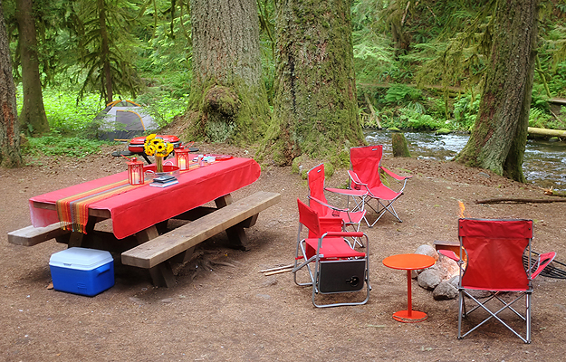 view of out set up under the old growth trees