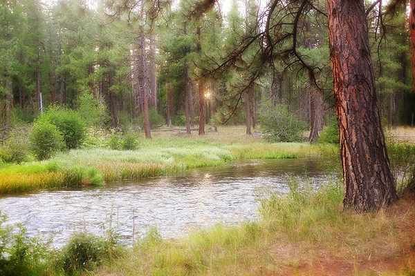 The Metolius as seen from our camp site.