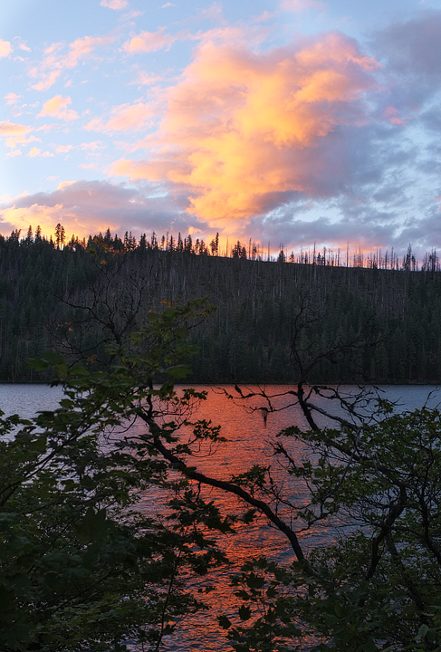 View of Suttle Lake from our site!