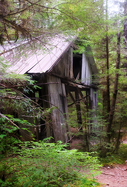 The old Sawmill…probably won't be there too much longer!