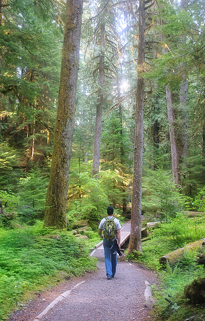 We didn't realize it, but his forest backed up to the Opal Creek Wilderness Area…lots of similar scenery!
