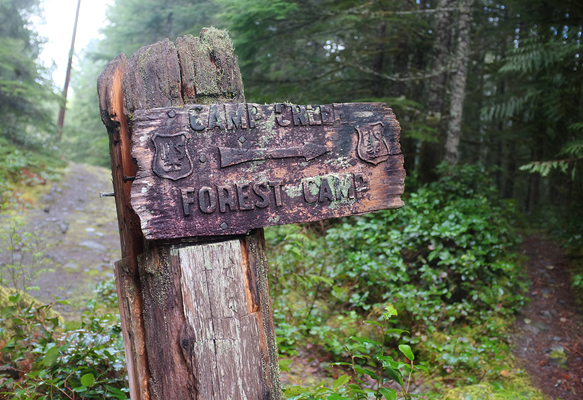 Old forest trail signs