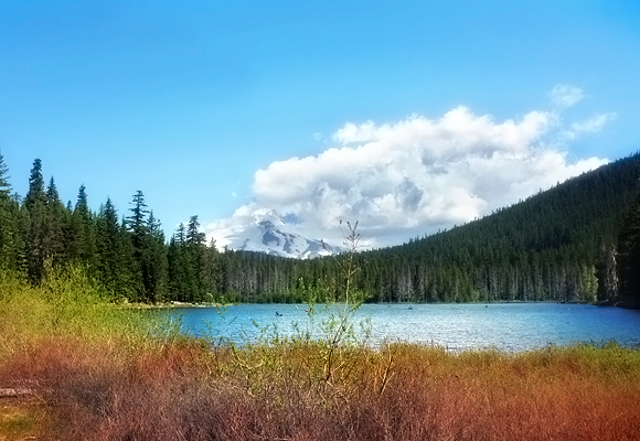 Frog Lake….on our list to visit this summer!