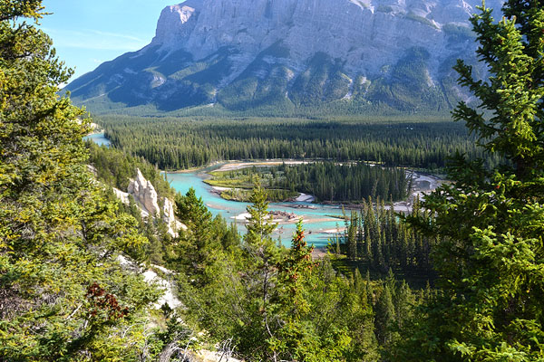 Another view of the Bow River as we were wandering around looking for wildlife.