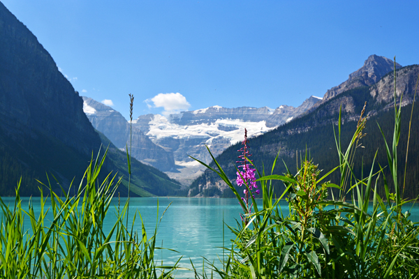 Lake Louise….Wow!