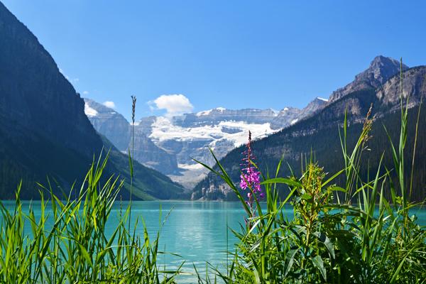 Lake Louise….Wow!