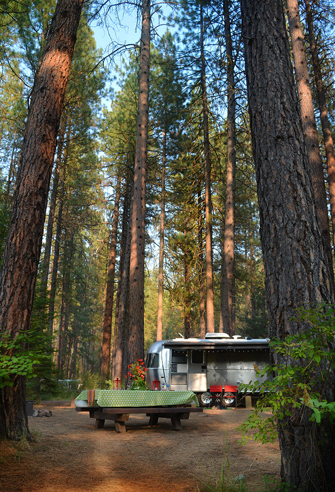 Even our big Airstream looks dwarfed in the trees. The Bambi always looked like a toy here.
