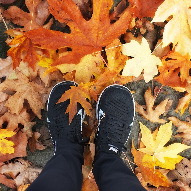 Love autumn!